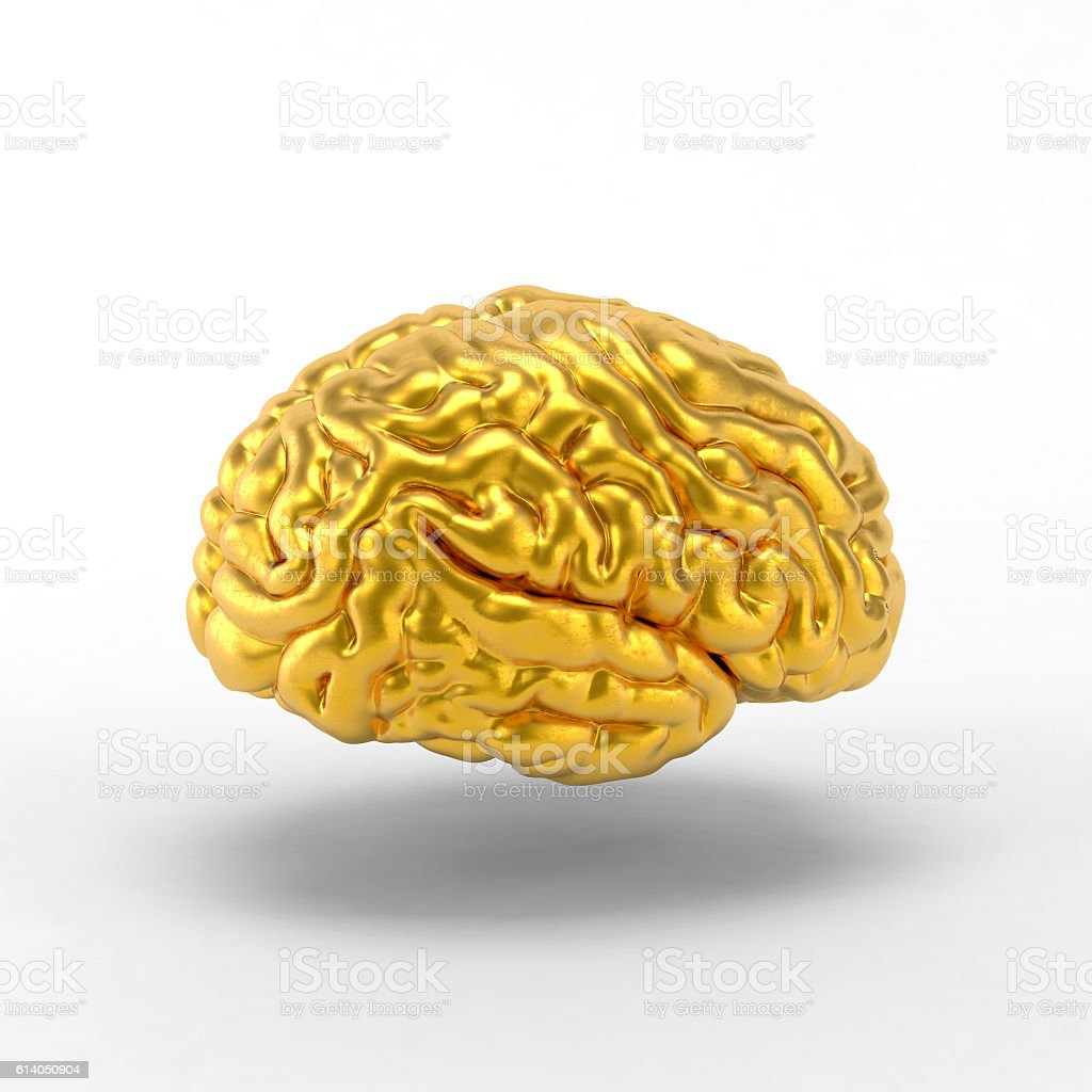Golden Brain On White Background Stock Photo & More Pictures of ...