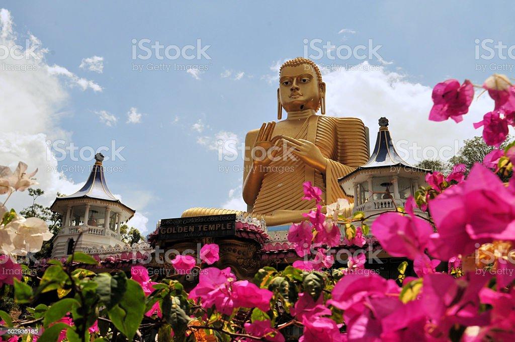 Golden Buddha of Dambulla, Sri Lanka. stock photo