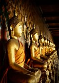 Row of golden Buddha statues in the Wat Arun temple in Bangkok Thailand.