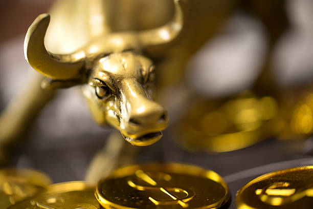 Golden bull shot of a golden bull on top of coins bull market stock pictures, royalty-free photos & images