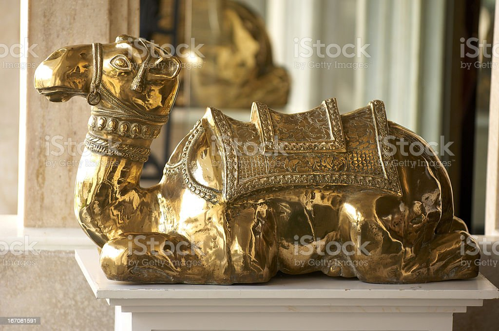 Golden Camel stock photo