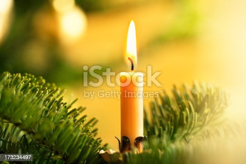 christmas candle burning in fir tree