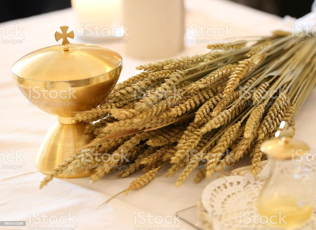 golden chalice and the ears of wheat zbiór zdjęć royalty-free