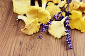 golden chantarelle mushrooms on table with herbs