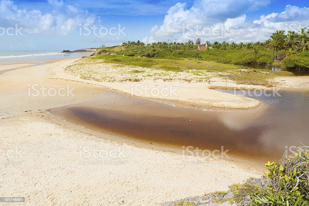 Golden coast,Costa Dourada,Espirito Santo Bahia Brazil royalty-free stock photo