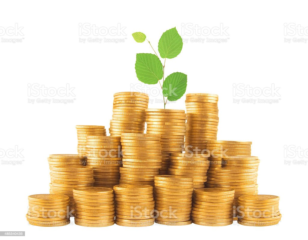 golden coins in column with green plant isolated on white stock photo