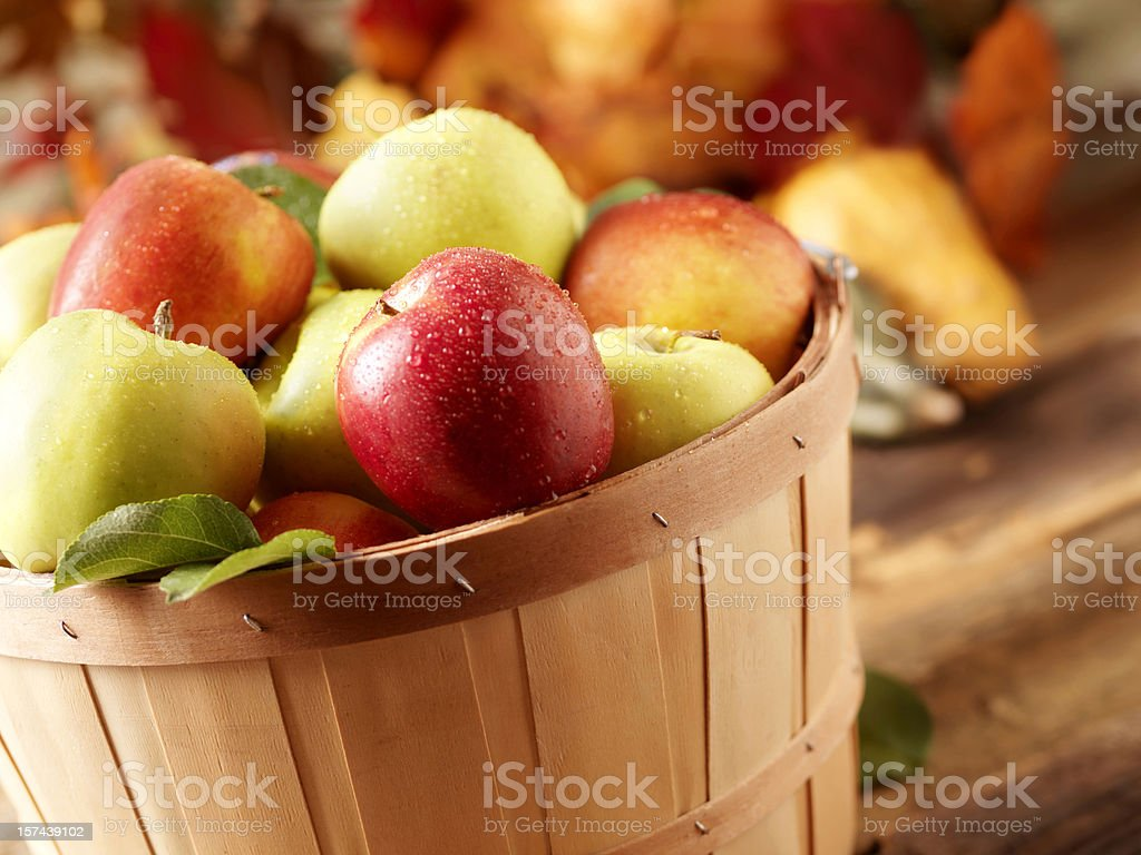 Golden Delicious and jazz apples at Harvest stock photo