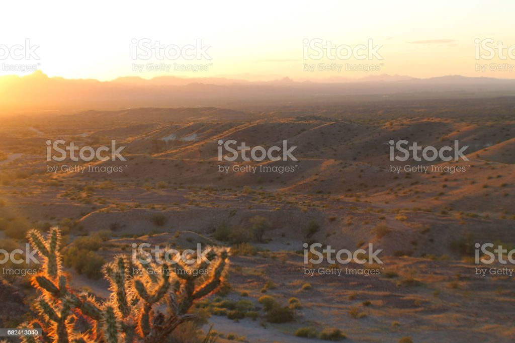 Golden Desert Landscape at Sunset stock photo