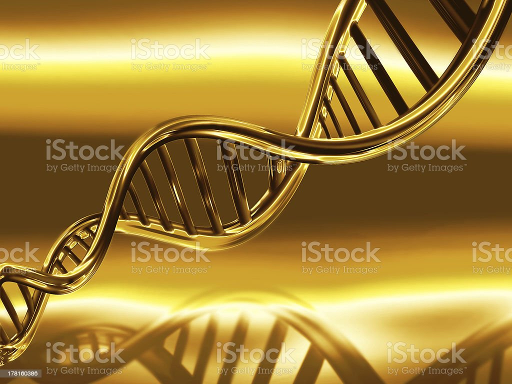 golden DNA strands royalty-free stock photo