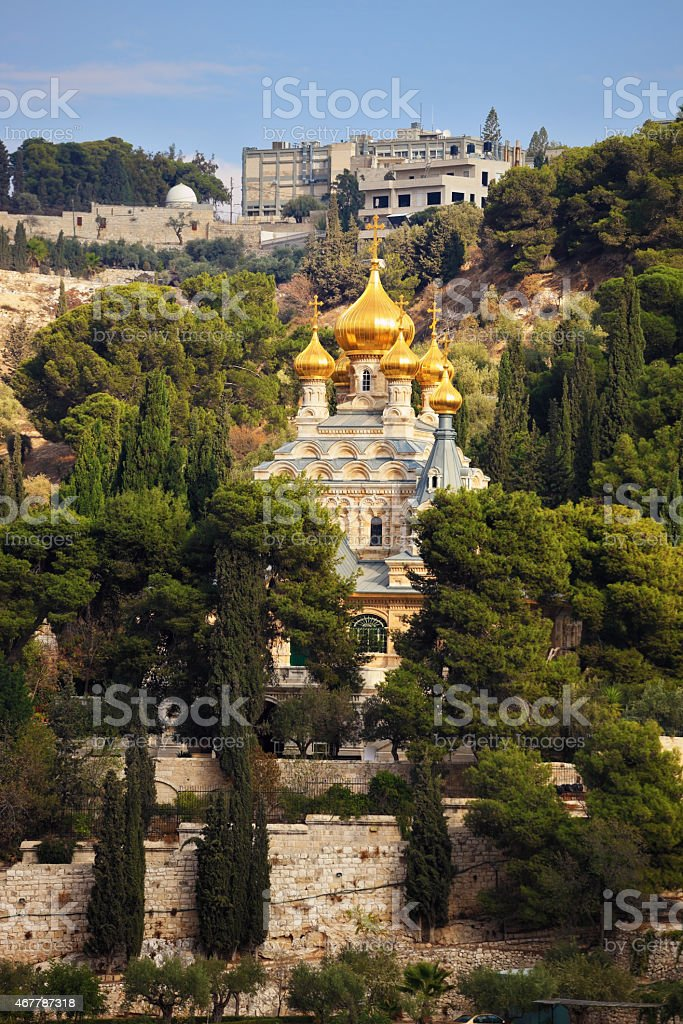 Golden domes in  the green park stock photo