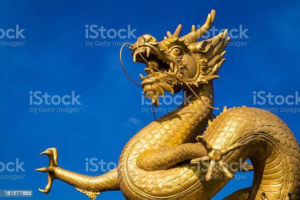 Gold dragon sally commercial organon hcg fake