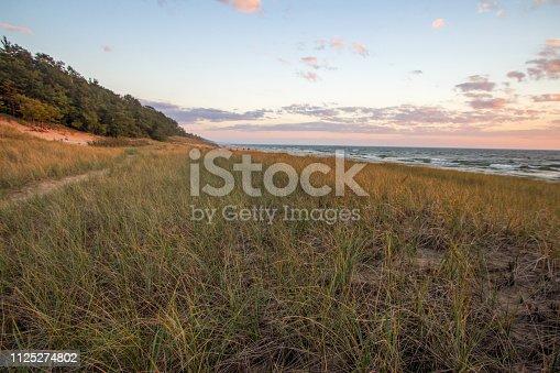 832047798istockphoto Golden Dune Grass And Beach At Sunset 1125274802