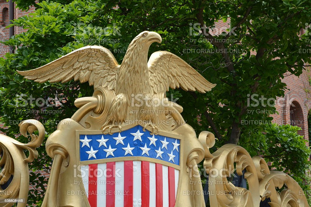 Golden Eagle and Flag stock photo