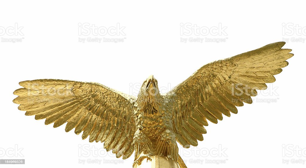 Golden Eagle royalty-free stock photo