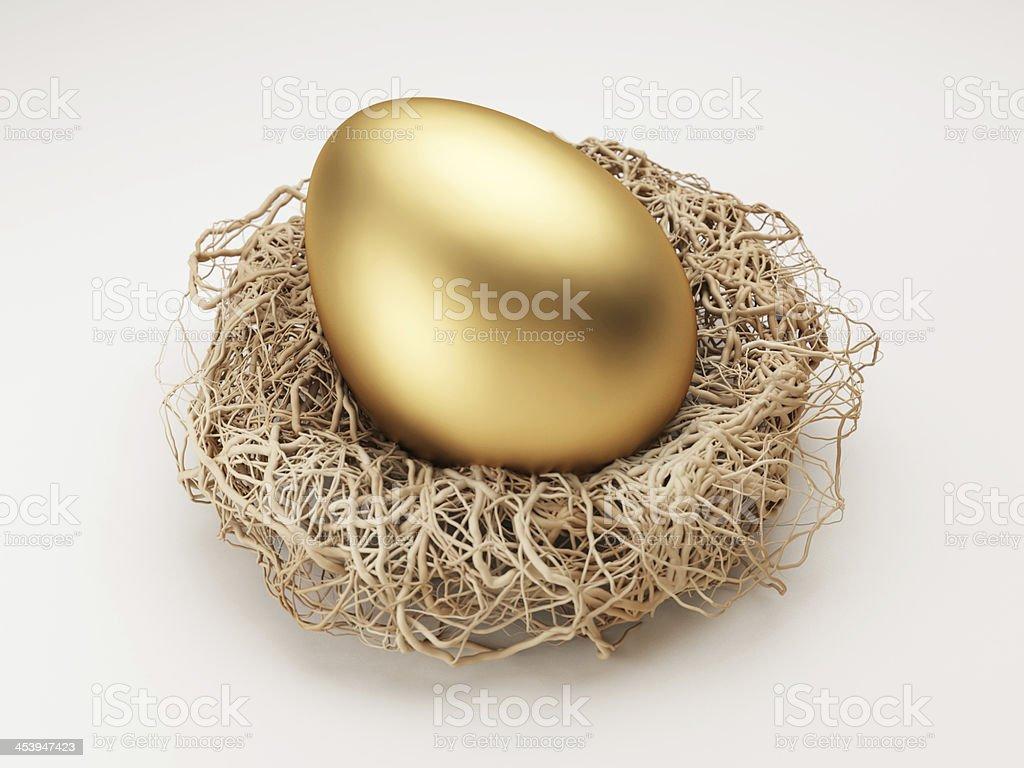 Nest Egg Lizenzfreies stock-foto