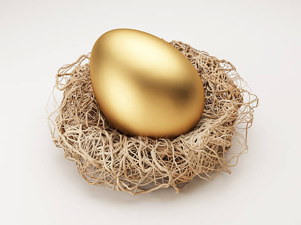 A golden egg in a nest on a white background Golden Egg in Nest Isolated on White nest egg stock pictures, royalty-free photos & images
