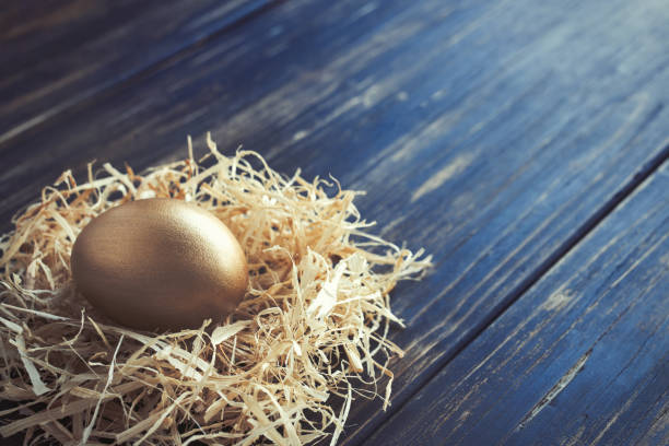 Golden egg in a nest stock photo