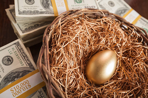 Golden Egg in Nest and Thousands of Dollars Surrounding Golden Egg in Nest with Thousands of Dollars on Table. nest egg stock pictures, royalty-free photos & images