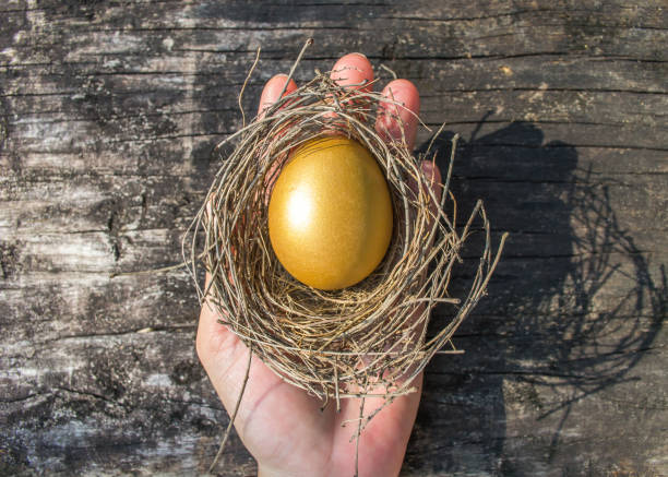 A golden egg opportunity concept of wealth and a chance to be rich stock photo