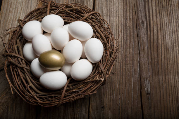Golden Egg Standing Out from a Crowd of Ordinary white Eggs stock photo