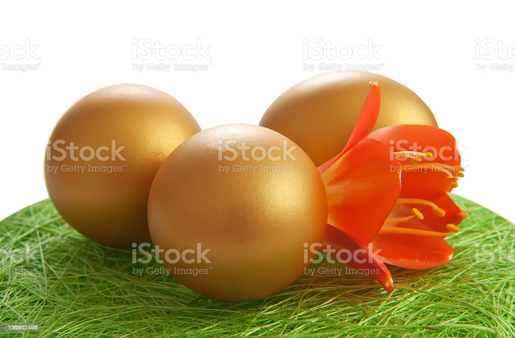 Golden egg with a flower on the grass. royalty-free stock photo