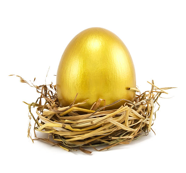 golden eggs in nest golden eggs in nest isolated on white nest egg stock pictures, royalty-free photos & images