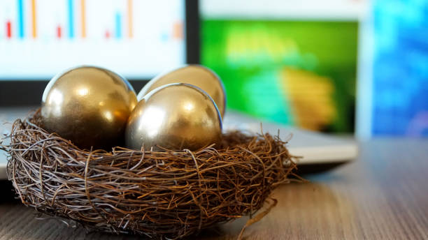 Golden Eggs. Making Money and Successful Investment. Golden Eggs. Making Money and Successful Investment. nest egg stock pictures, royalty-free photos & images