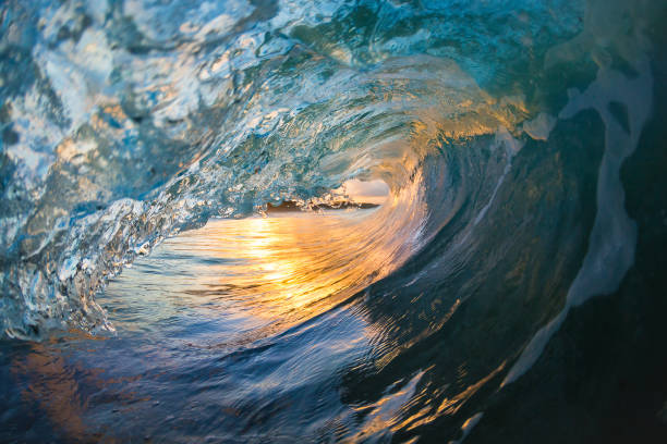 golden eye - wave stock photos and pictures