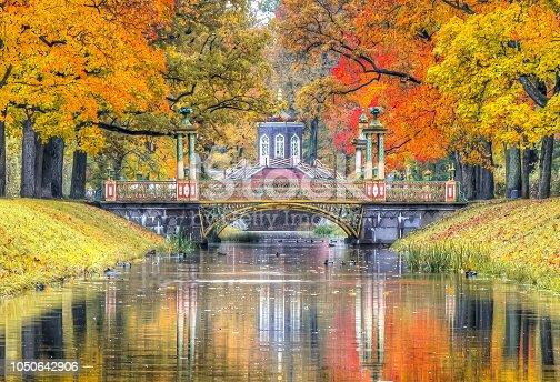 Golden fall in Alexander park, Pushkin, St. Petersburg, Russia