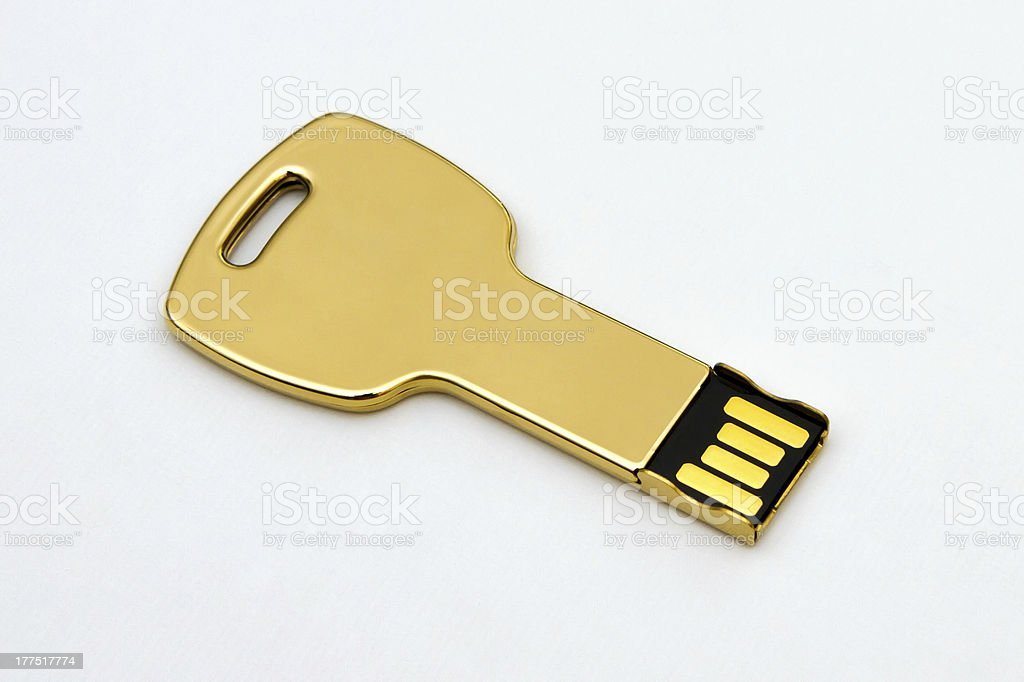 Golden Flash Memory royalty-free stock photo