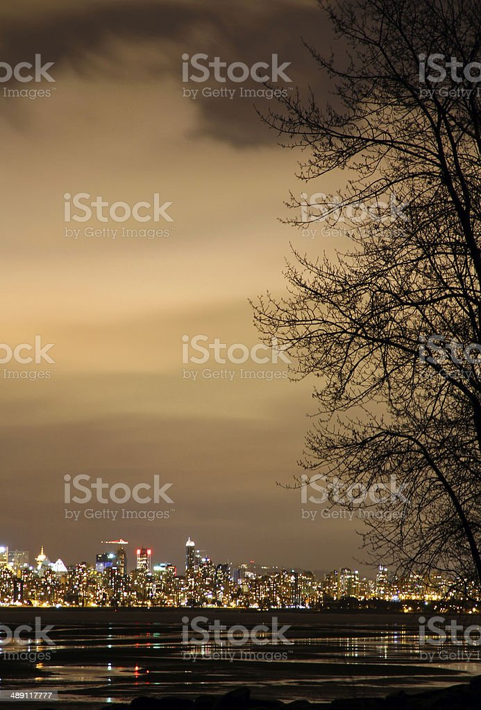 Golden Fog royalty-free stock photo