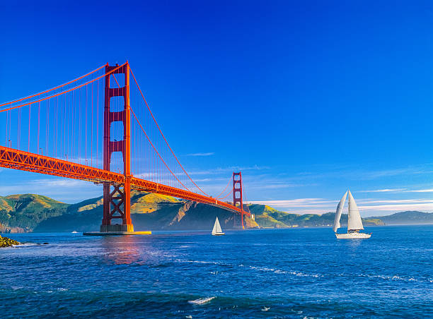 Golden Gate bridge and San Francisco Bay, CA (P) Golden Gate bridge with chain fencing and San Francisco Bay, CA golden gate bridge stock pictures, royalty-free photos & images