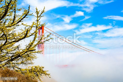 530755444 istock photo Golden Gate Bridge 1182178110