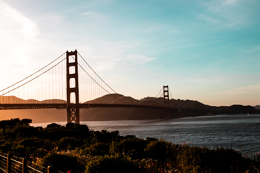 Golden Gatebron-foton och fler bilder på Bro