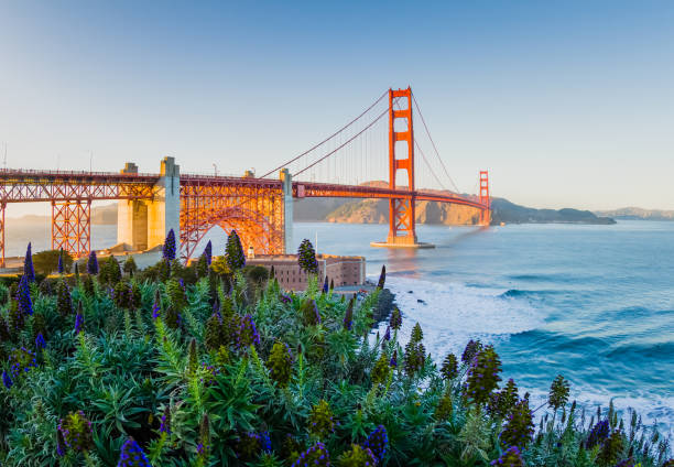 Golden Gate Bridge San Francisco Sunset Classic San Francisco, California Golden Gate Bridge Sunset san francisco california stock pictures, royalty-free photos & images
