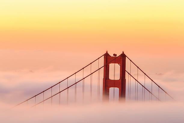 golden gate bridge south tower bei sonnenaufgang - süd kalifornien stock-fotos und bilder