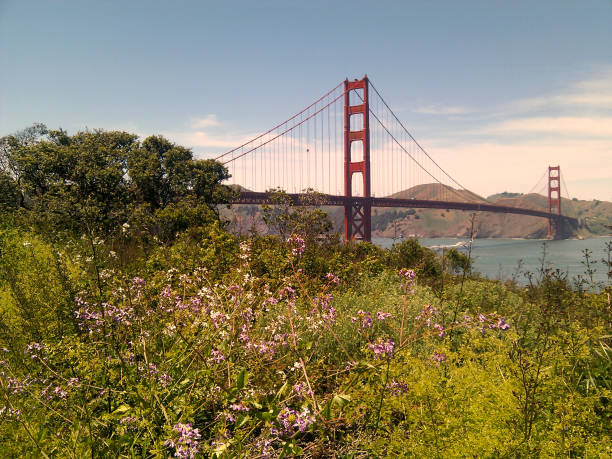 Golden Gate Bridge view from Battery East stock photo