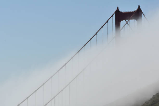 golden gate bridge with fog - steven harrie stock photos and pictures