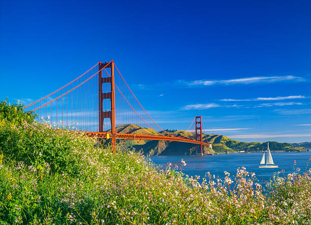 Golden Gate bridge with spring flowers and recreational boat, CA – Foto