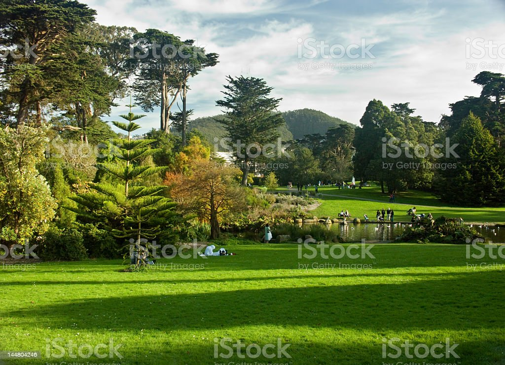 Golden gate park on a sunny day stock photo