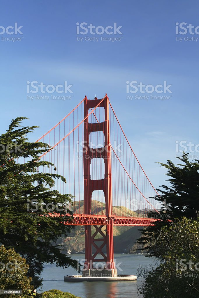 Golden Gate with Trees royalty-free stock photo