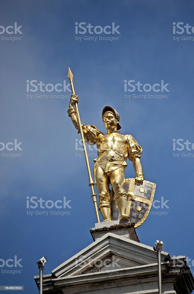 Golden Guardsman royalty-free stock photo