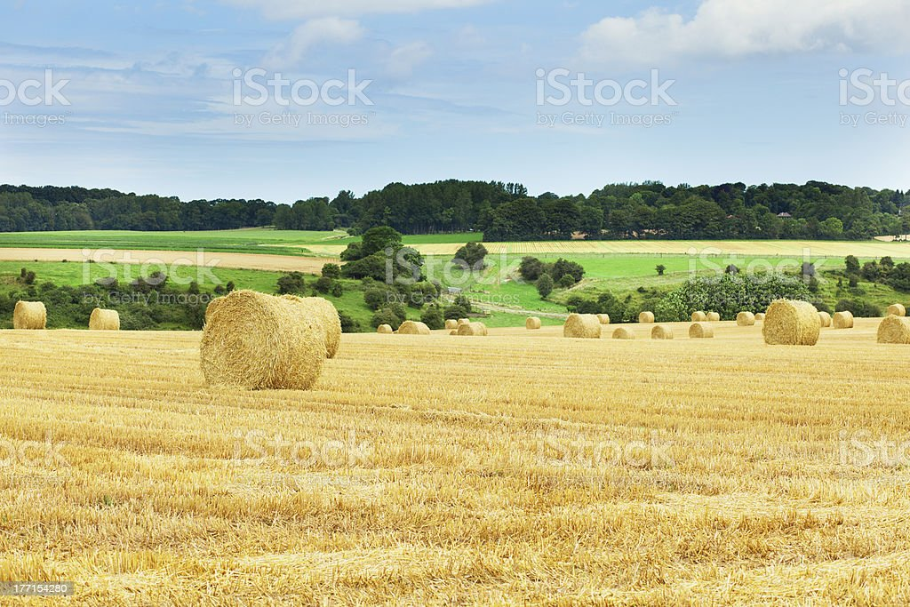 Golden hay bales in French countryside royalty-free stock photo