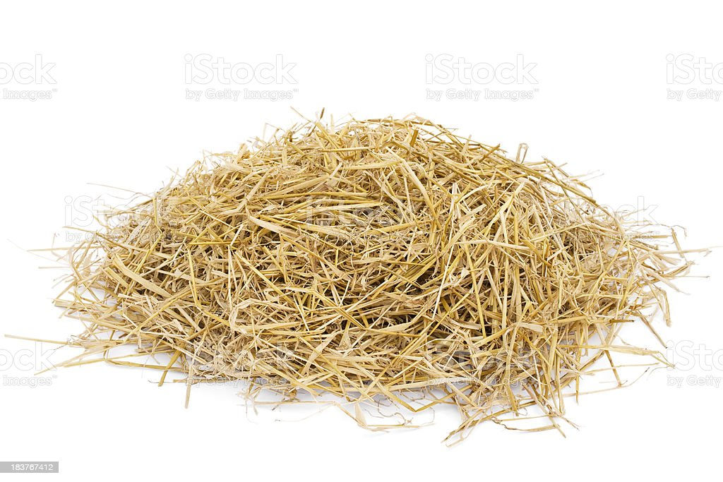 Golden hay heap isolated on white stock photo