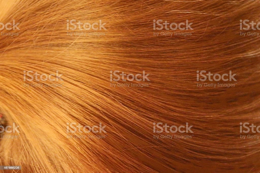 A close-up photo of Golden healthy hair texture