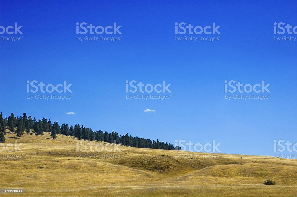 Golden Hills royalty-free stock photo