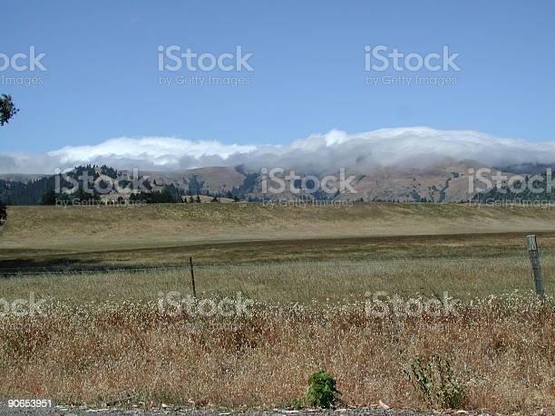 Photo of Golden hills