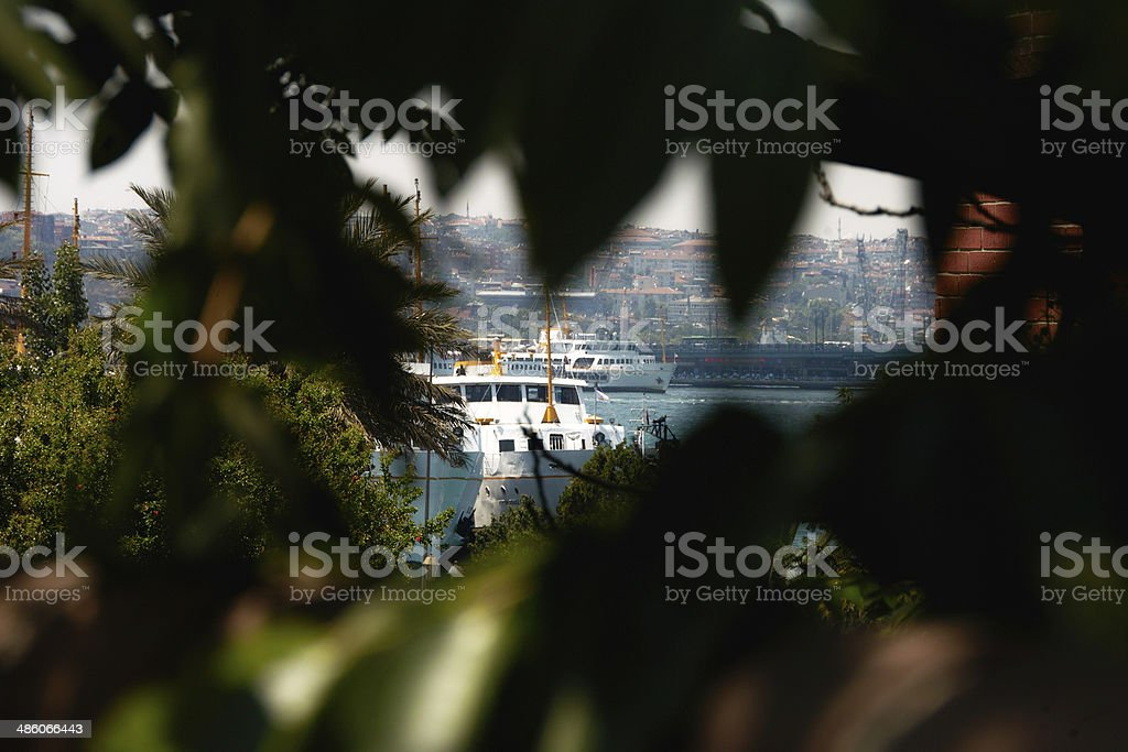 Golden horn royalty-free stock photo