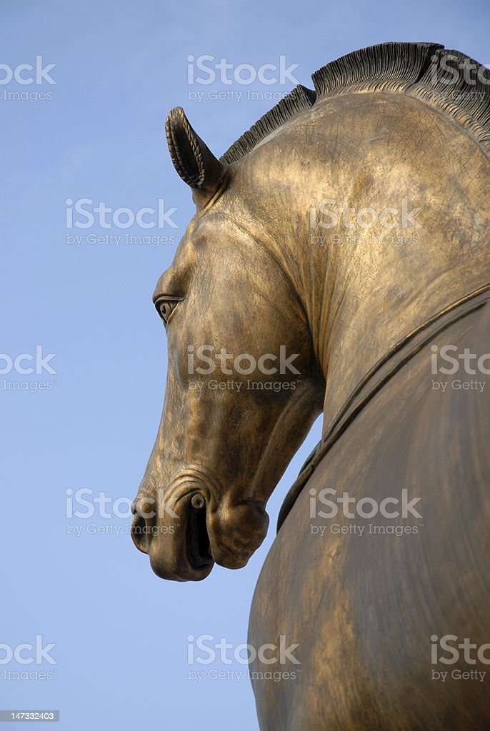 Golden Horse stock photo