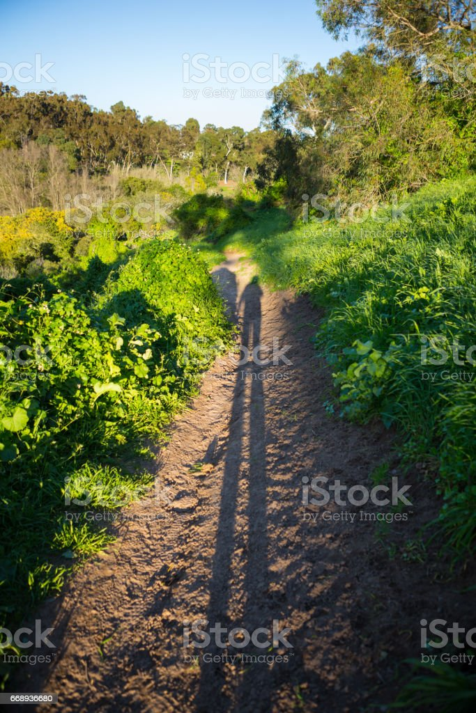 Golden hour Shadow in Palos Verdes stock photo